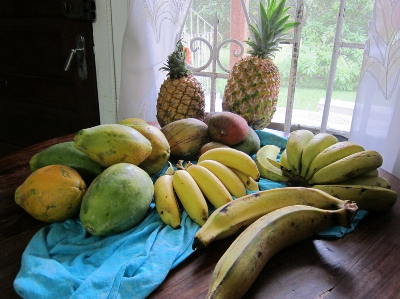 Papayas, pineapple, mango, bananas, honey bananas, and plantain