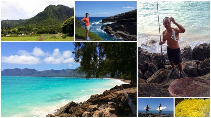 Home_in_Hawaii