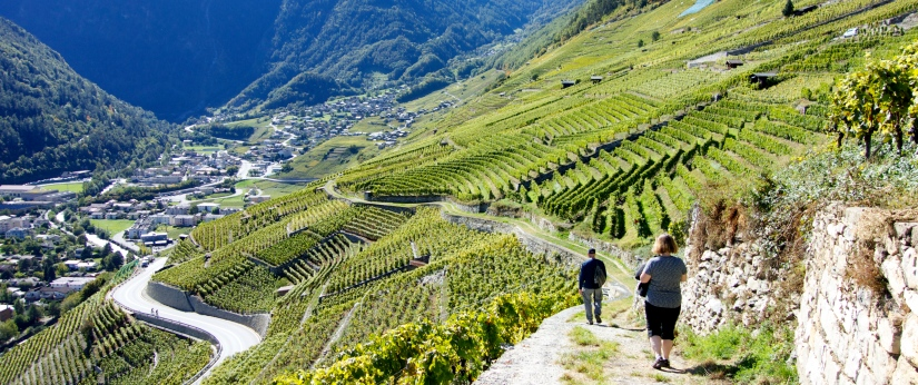 Martigny-Switzerland-hiking-vineyards