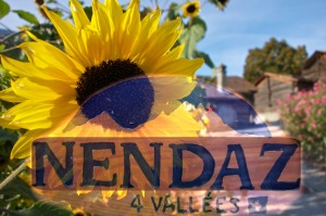 Nendaz-Swiss-Sunflower